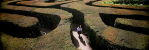 Hampton Court Maze Welcomes Visitors During The Bank Holiday Weekend