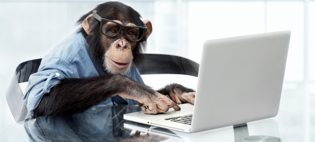 chimp at a typewriter
