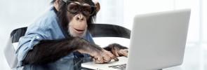 chimp at a typewriter